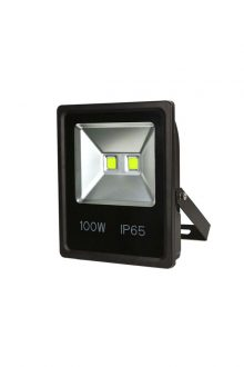 HIGH POWER LED FLOOD LIGHT100W